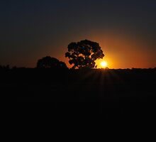 Aussie Sunset by Lozzar Landscape
