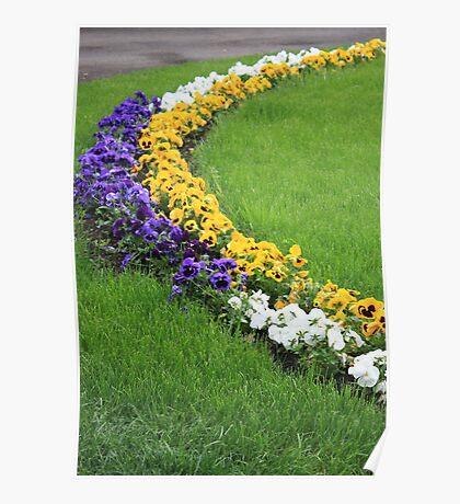 Floral Boundaries Poster