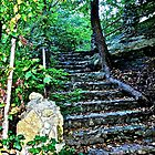 Rock stairway in a park by Ann Reece
