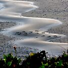 Rippling Footprints by trueblvr