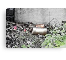 Rust and Flowers Canvas Print