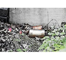 Rust and Flowers Photographic Print
