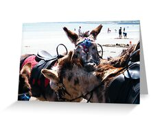 You scratch my back......... Greeting Card