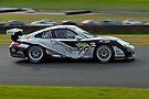 Australian GT Championship   Eastern Creek Raceway   Sports Car Carnival 2010   Rosche Paper, A Gas   D.Flack -A.Flack   Porsche GT3 by DavidIori