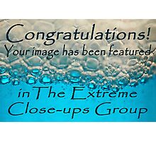 entry for extreme close-up banner challenge Photographic Print