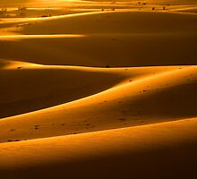 Dune Sunset by Peter Doré