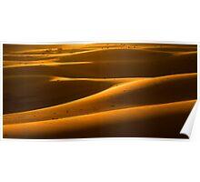 Dune Sunset Poster