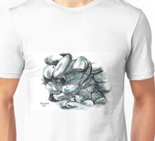 Pebbles and stones Unisex T-Shirt