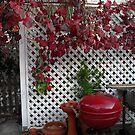 Still Autumn by joycee