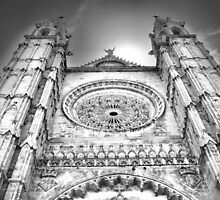 Palma Cathedral by Mike Higgins