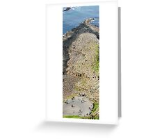 The Causeway Greeting Card