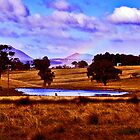 Megalong Valley Dam  in NSW Australia by Virginiad