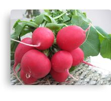 Radish Red Canvas Print