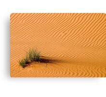Desert Grass Canvas Print