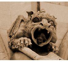Gargoyle in a Gargoyle Photographic Print