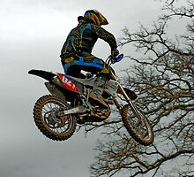 Dirty Pic 1 In the trees by caafephoto