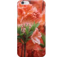 Azalea Blaze iPhone Case/Skin