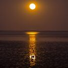 Hearson's Cove Moonrise by Doug Cliff