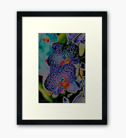 Couple of Orchids in BLUES <3 Framed Print