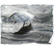 Egret swirl Poster
