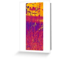no blue ink in the printer! Greeting Card