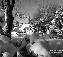 Snow White -- the blizzard of 2010 by MATHEW MATHEW
