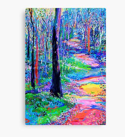 By Blackbutt Creek Canvas Print