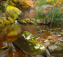 Eller Beck, Beck Hole, North Yorkshire Moors by James Paul