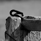 The Fence Post by AlexKokas