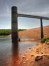 Reservoir Shoreline by Aaron Campbell