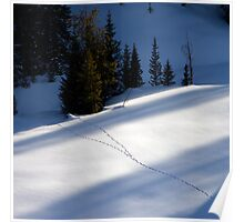 Snowtracks Poster