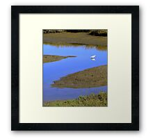 Reflecting on the Letter Z Framed Print