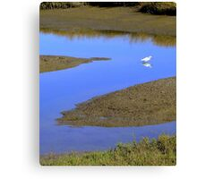 Reflecting on the Letter Z Canvas Print