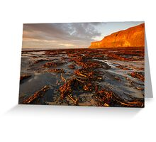 Huntsman Cliff, Saltburn-by-the-Sea, Cleveland Greeting Card