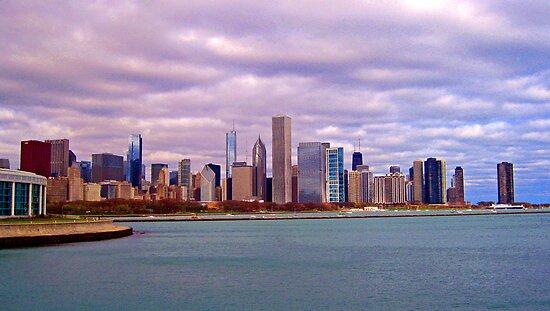 Chicago Skyline by Lynne Prestebak