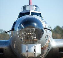 Nose of the B-17 by bleriger