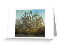 Light dreams Greeting Card
