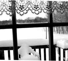 Winter scene through the Window in Northern Ontario, Canada by roserock