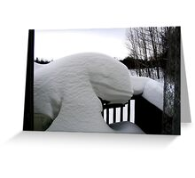 Day After Snow Storm in Northern Ontario, Canada Greeting Card