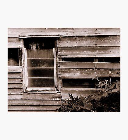 Renovator's Delight Photographic Print