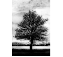 Abstract Tree Orton Photographic Print