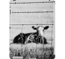 barriers iPad Case/Skin