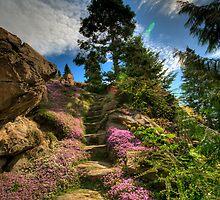 Ohme Gardens by Brad Granger
