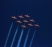 Canadian Snowbirds by N2Digital