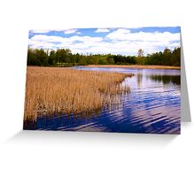 Christie Wetlands_1 Greeting Card