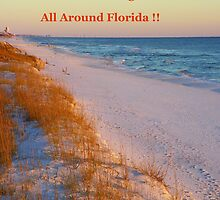 An Entry For a Banner Contest  Grayton Beach 2 by Judy Wanamaker