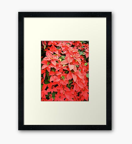 Waiting for Christmas! Framed Print