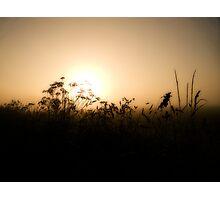 At Dawn Photographic Print