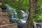 Mohawk Falls Beyond The Stone Steps and Spring Trees by Gene Walls