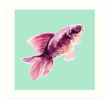 Magneta Fish on Mint  Art Print